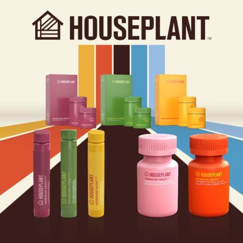Houseplant Cannabis