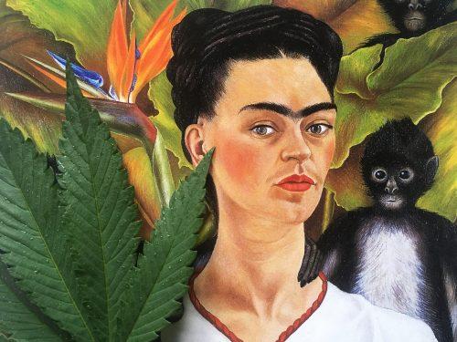 Frida y Cannabis - Javier Hasse