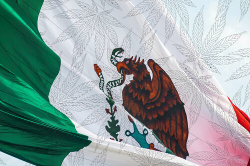 Mexico Marihuana