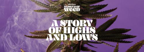 Museo del Cannabis
