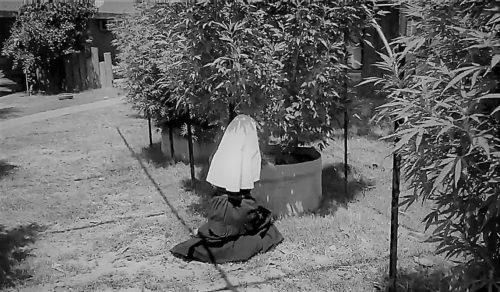 Monjas de la Marihuana