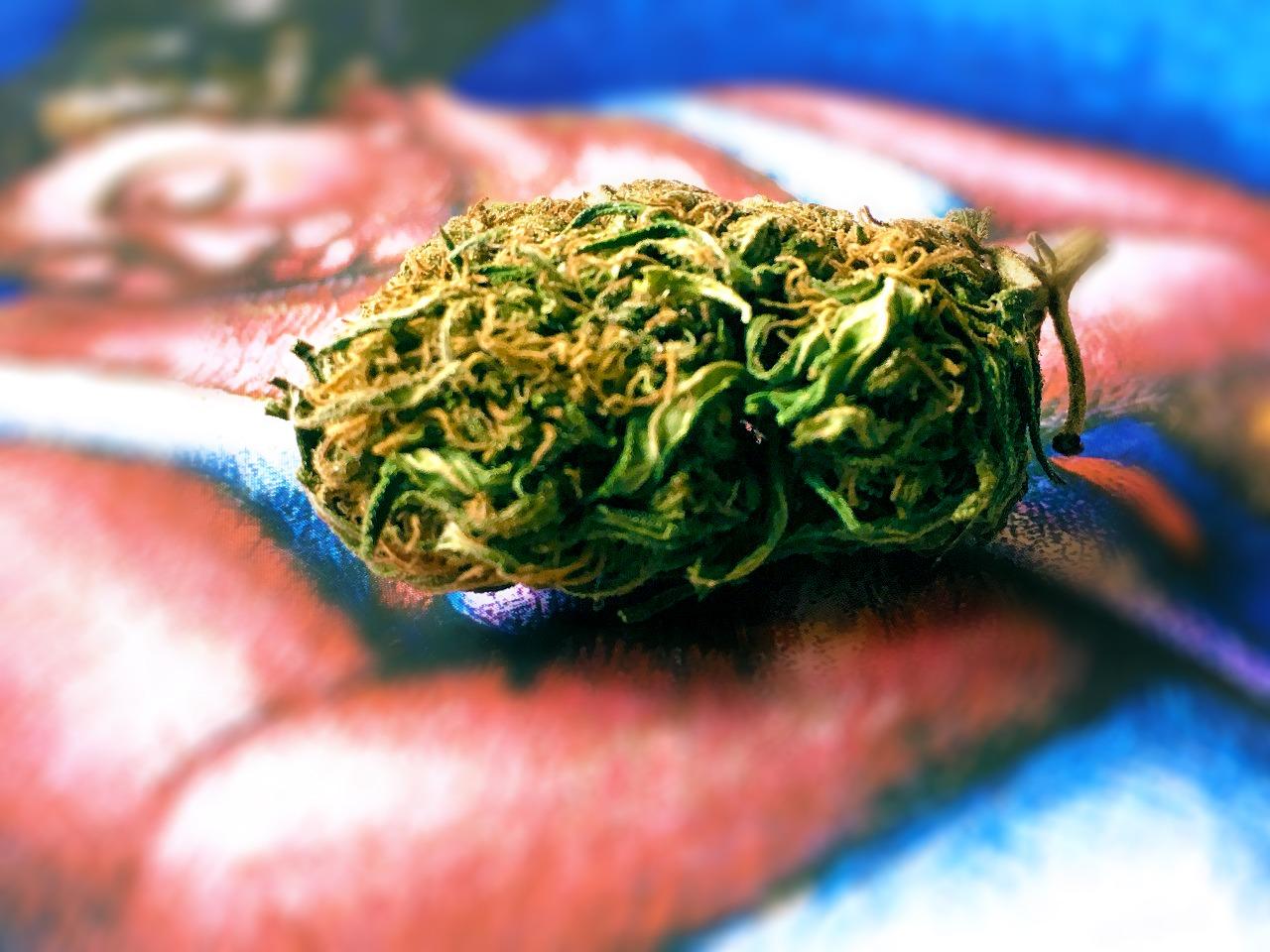 Autismo y Cannabis