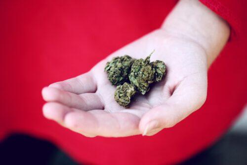 Cannabis y Menstruacion
