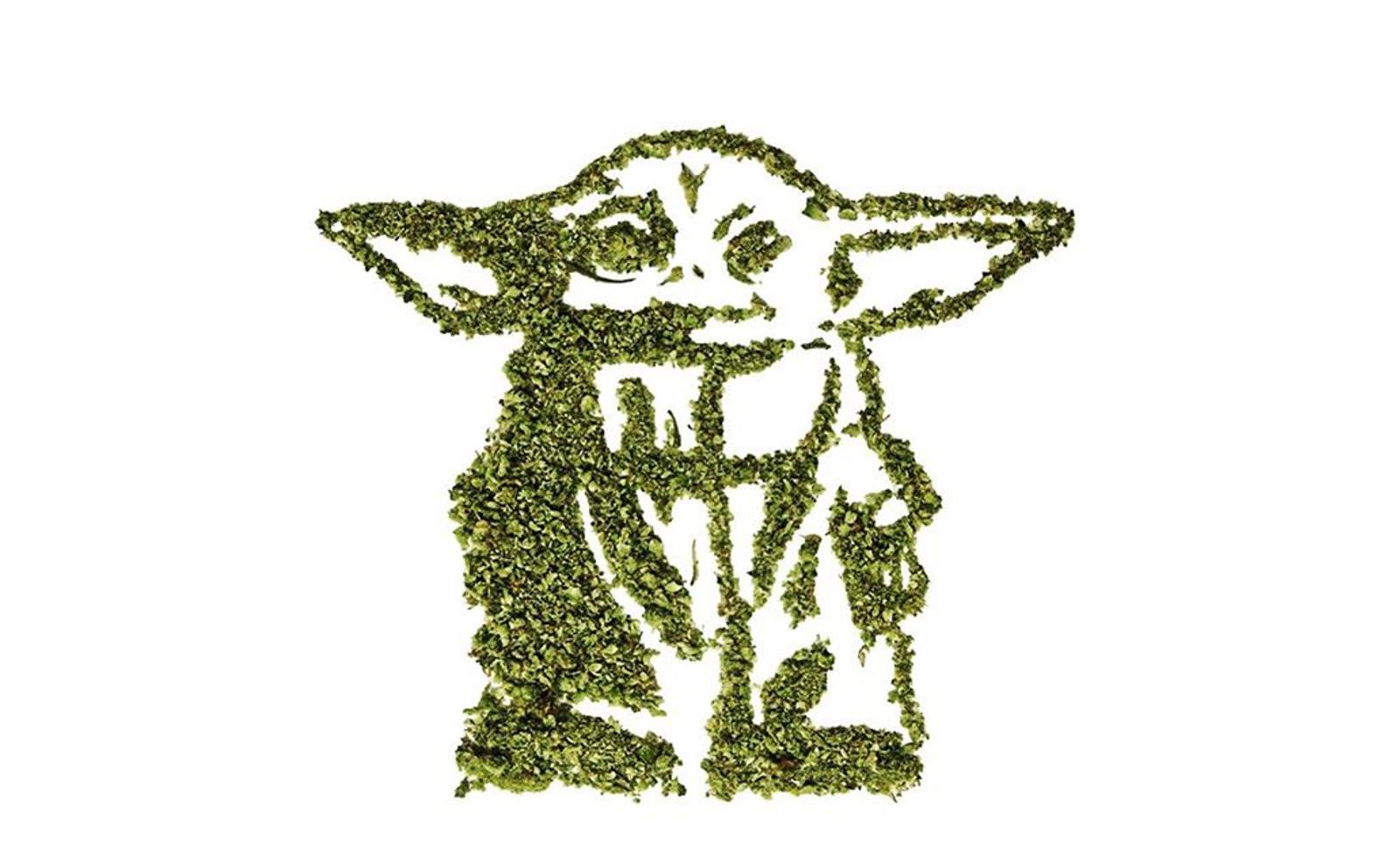 Star Wars Porro