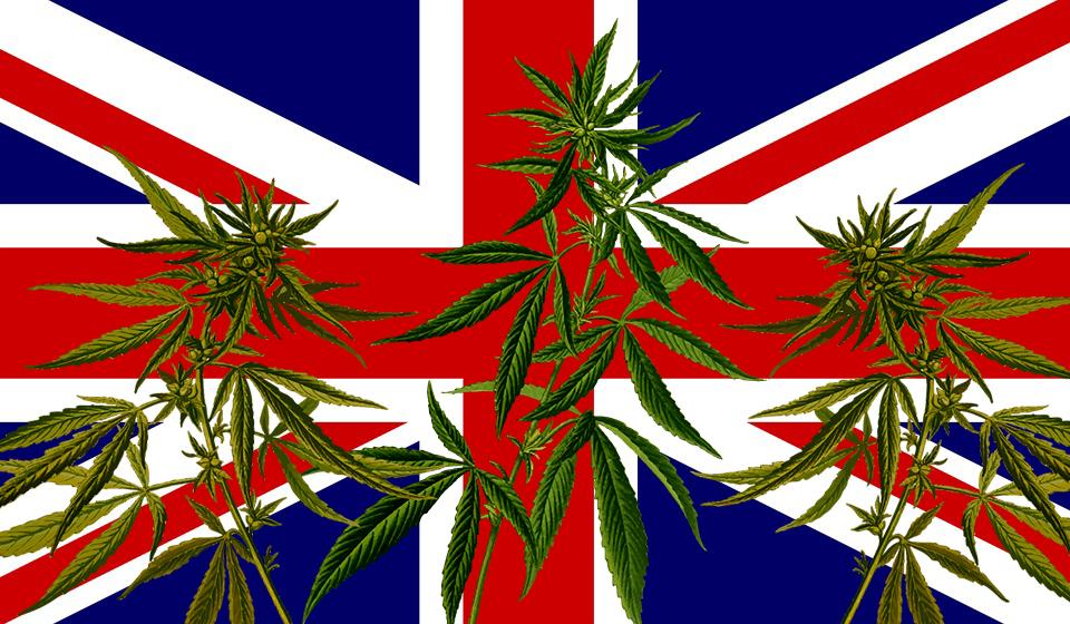 Cannabis Reino Unido