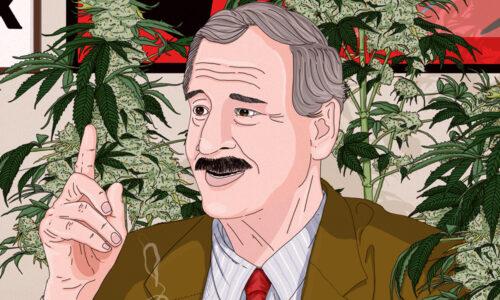 Vicente Fox Cannabis