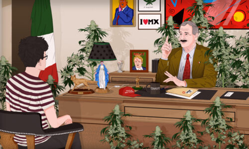 Vicente Fox Cannabis