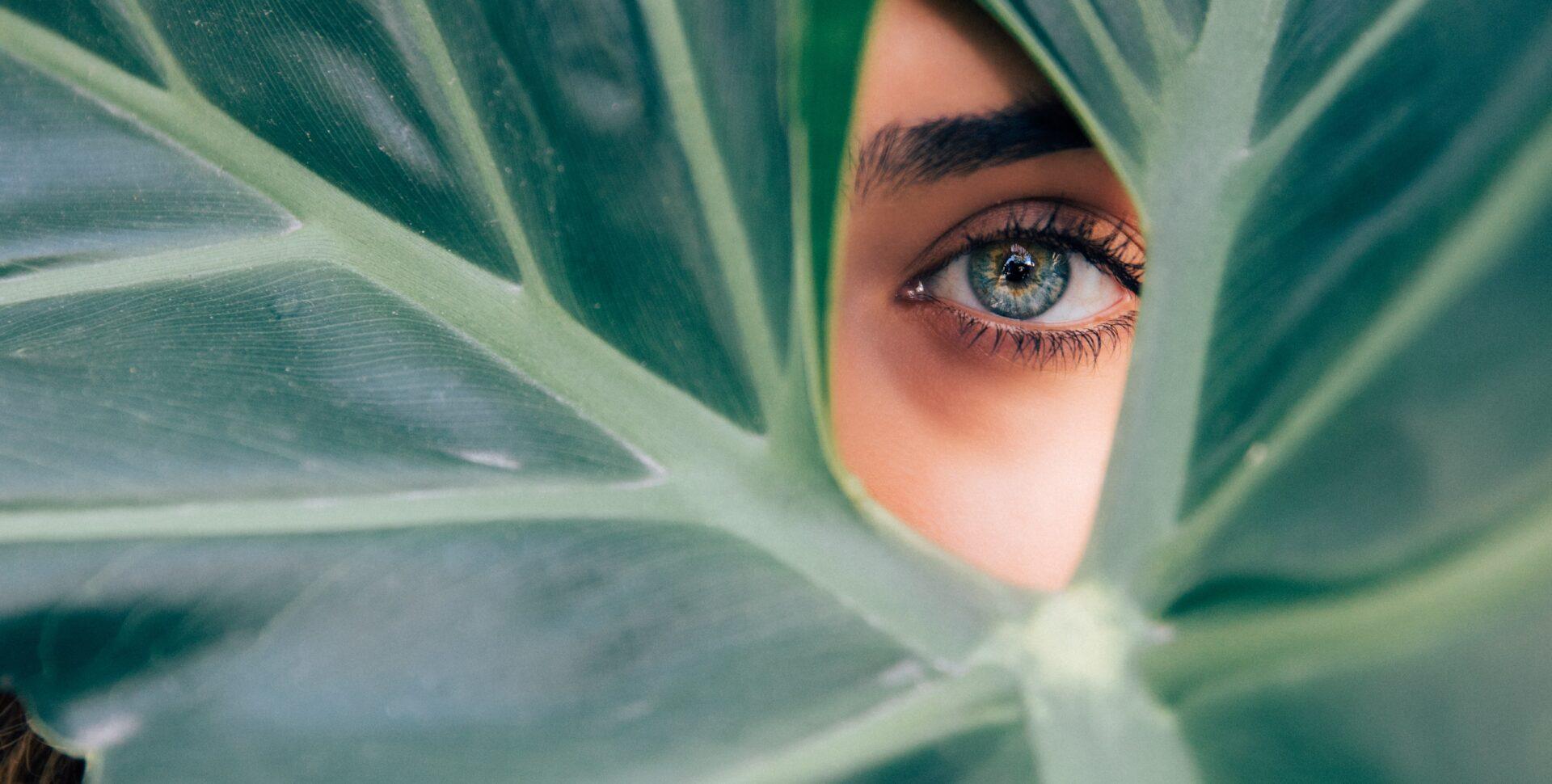 marihuana glaucoma