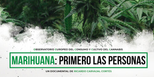 Observatorio Español de Cannabis