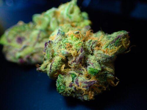 cannabis brasil tailandia