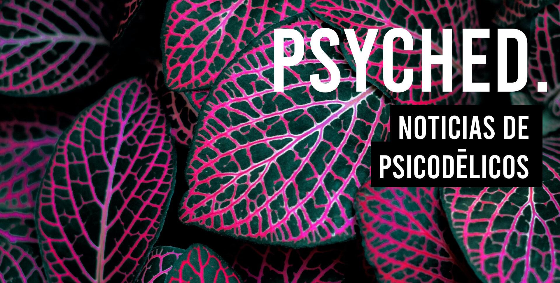 psyched noticias psicodélicos