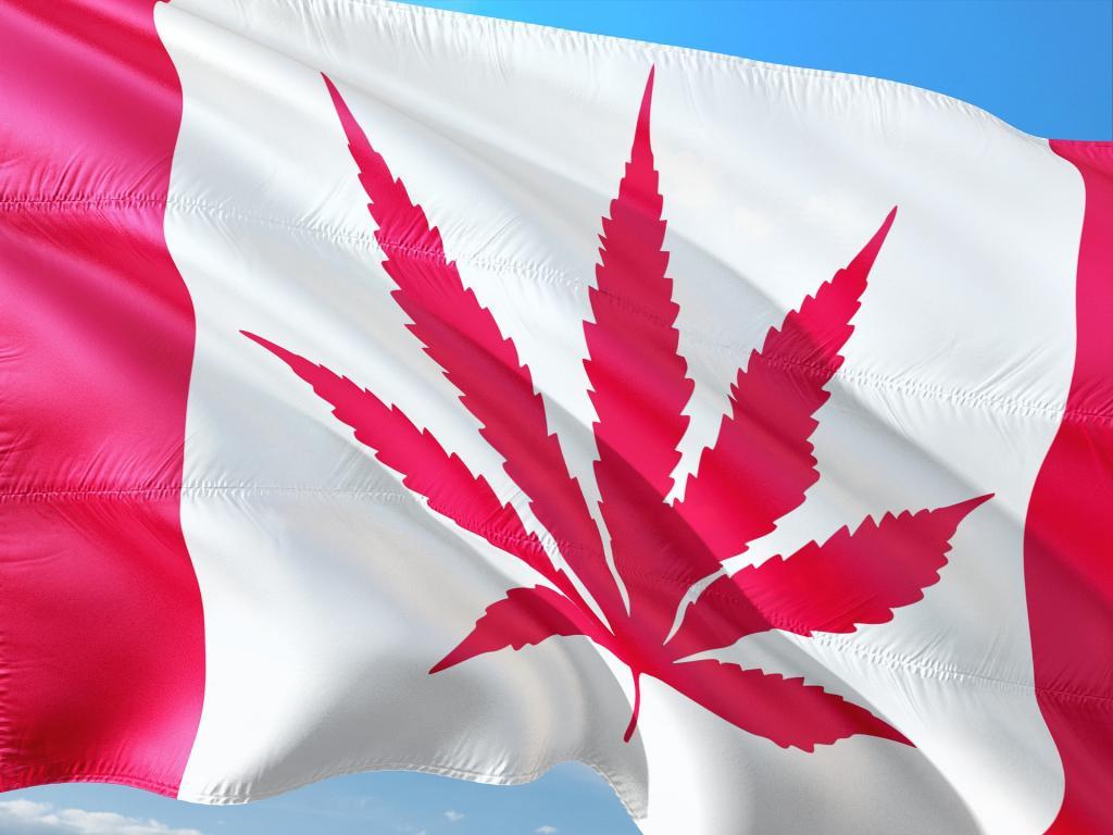 cannabis canadá