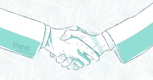 spac cannabis