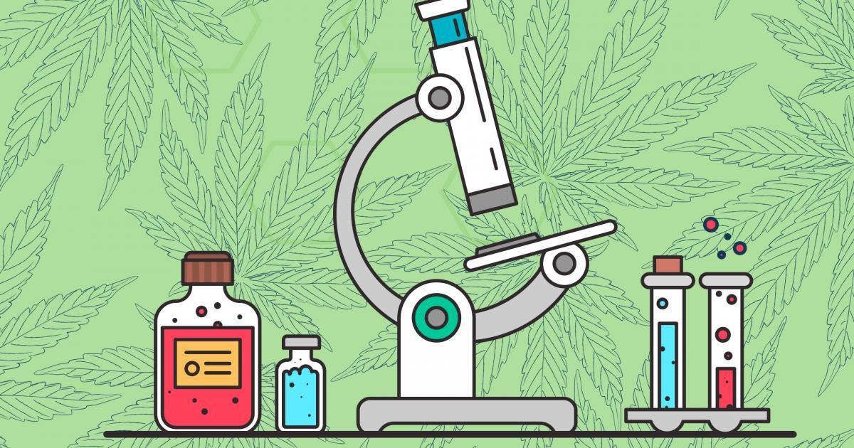 cannabis laboratorio